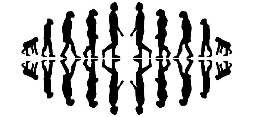 evolution of mirrors